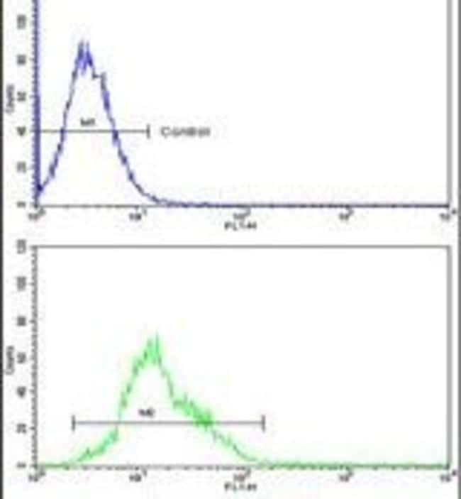AMPD2 Rabbit anti-Human, Polyclonal, Invitrogen 400 µL; Unconjugated