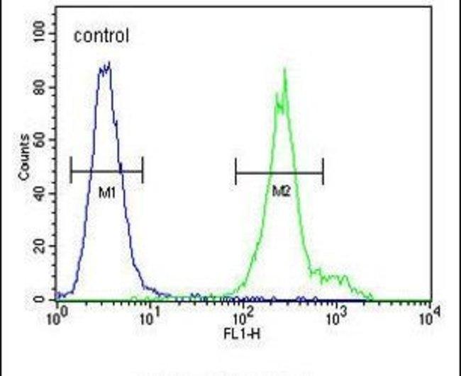 ANKFY1 Rabbit anti-Human, Polyclonal, Invitrogen 400 µL; Unconjugated