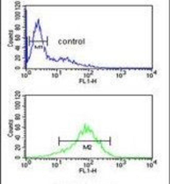 ANR49 Rabbit anti-Human, Polyclonal, Invitrogen 400 µL; Unconjugated