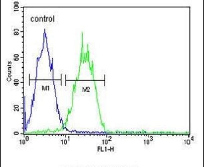 ARGLU1 Rabbit anti-Human, Polyclonal, Invitrogen 400 µL; Unconjugated