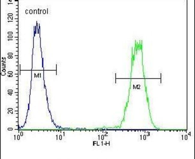 ARV1 Rabbit anti-Human, Mouse, Polyclonal, Invitrogen 400 µL; Unconjugated