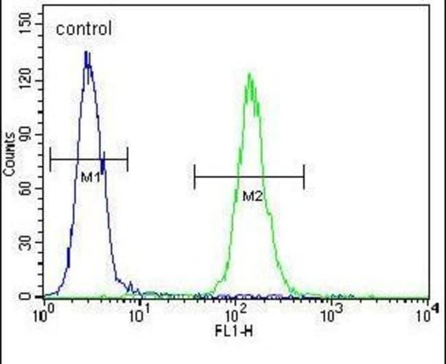 Mist1 Rabbit anti-Human, Mouse, Polyclonal, Invitrogen 400 µL; Unconjugated