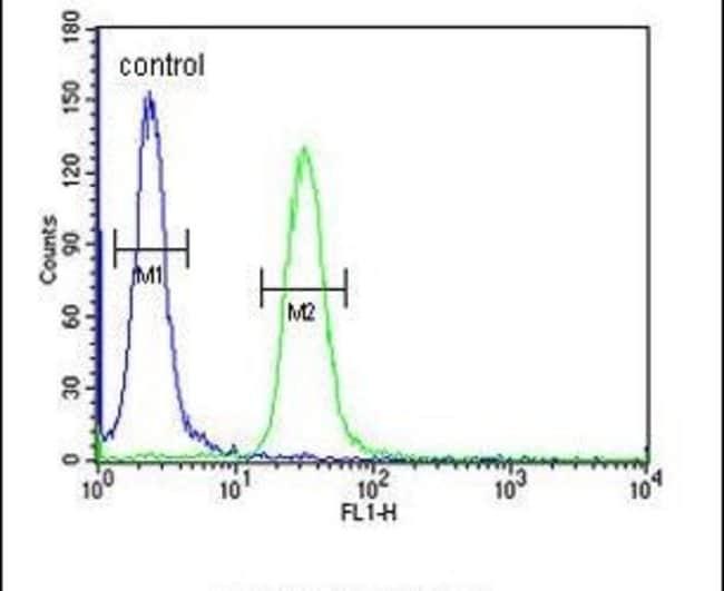 Bub1 Rabbit anti-Human, Polyclonal, Invitrogen 400 µL; Unconjugated
