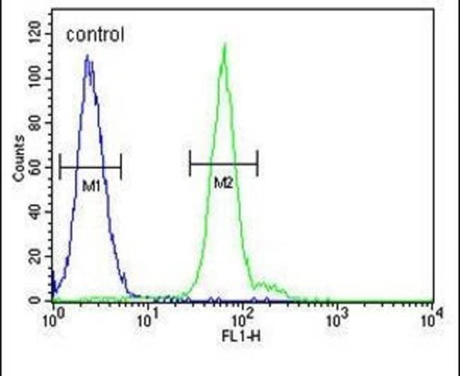 ATG14 Rabbit anti-Human, Polyclonal, Invitrogen 400 µL; Unconjugated