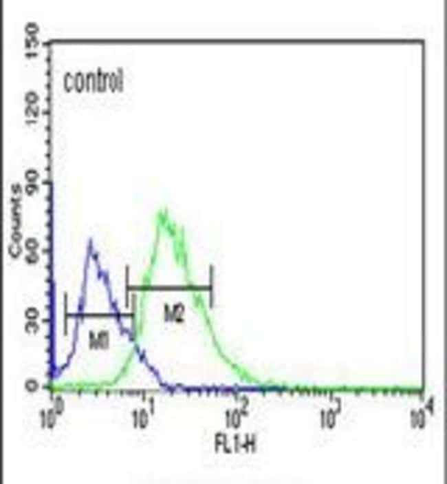 C12orf53 Rabbit anti-Human, Mouse, Polyclonal, Invitrogen 400 µL;