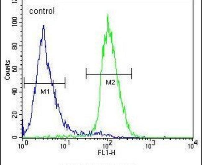 C1orf51 Rabbit anti-Human, Polyclonal, Invitrogen 400 µL; Unconjugated