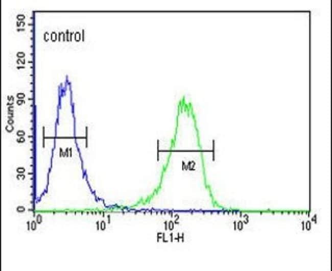 TSPEAR Rabbit anti-Human, Polyclonal, Invitrogen 400 µL; Unconjugated