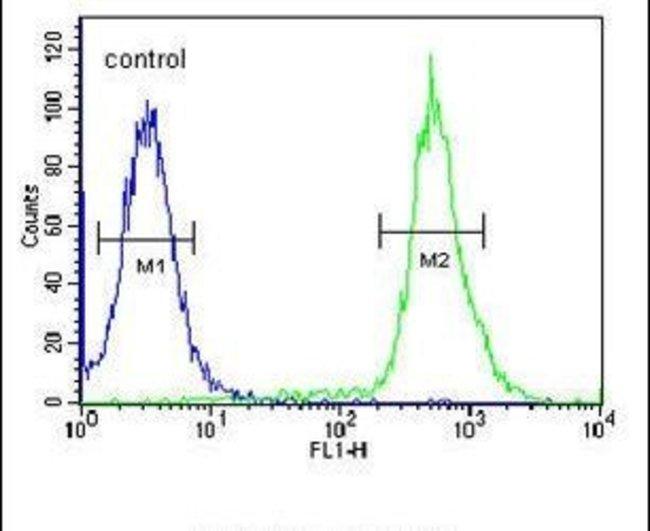 C3orf31 Rabbit anti-Human, Mouse, Polyclonal, Invitrogen 400 µL; Unconjugated