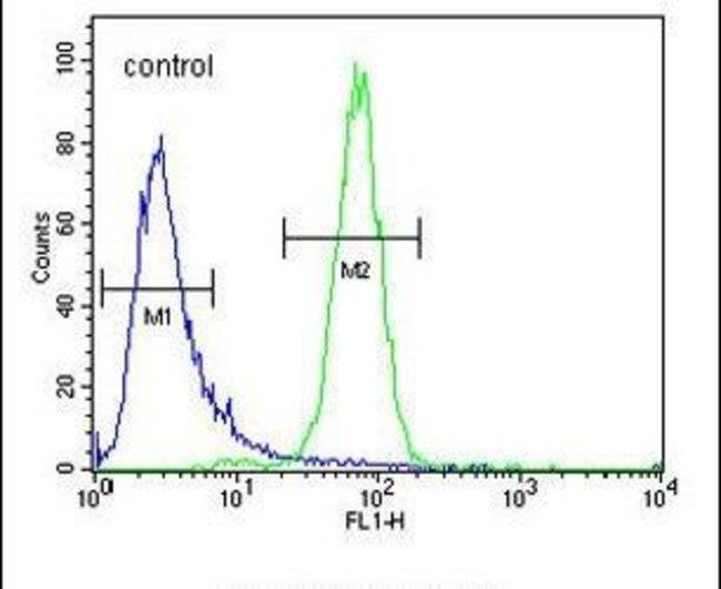 C6orf58 Rabbit anti-Human, Polyclonal, Invitrogen 400 µL; Unconjugated