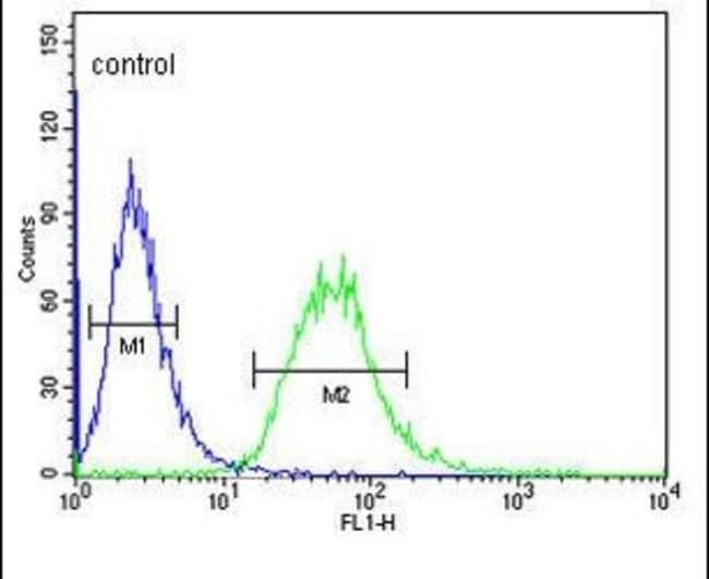 Carbonic Anhydrase VI Rabbit anti-Human, Polyclonal, Invitrogen 400 µL;