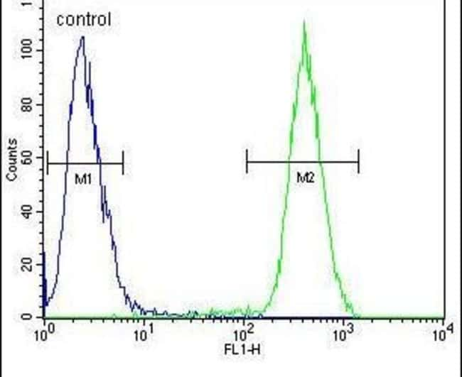 CAMLG Rabbit anti-Human, Polyclonal, Invitrogen 400 µL; Unconjugated