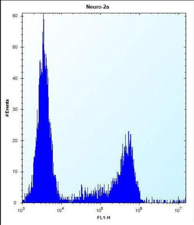 CASC4 Rabbit anti-Human, Mouse, Polyclonal, Invitrogen 400 µL; Unconjugated