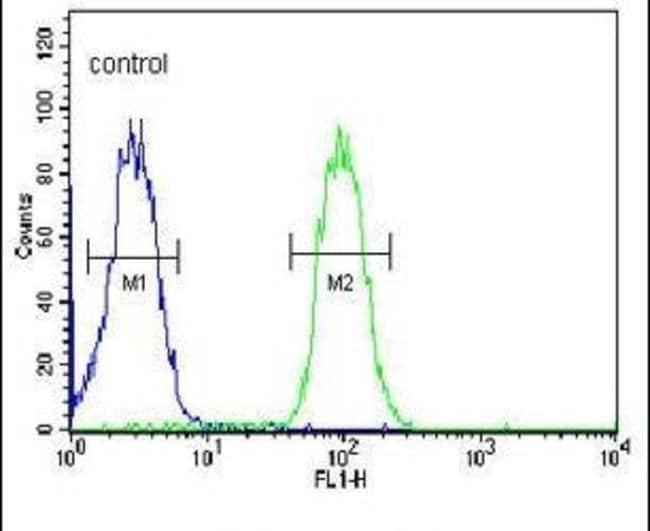 TMEM30B Rabbit anti-Human, Polyclonal, Invitrogen 400 µL; Unconjugated