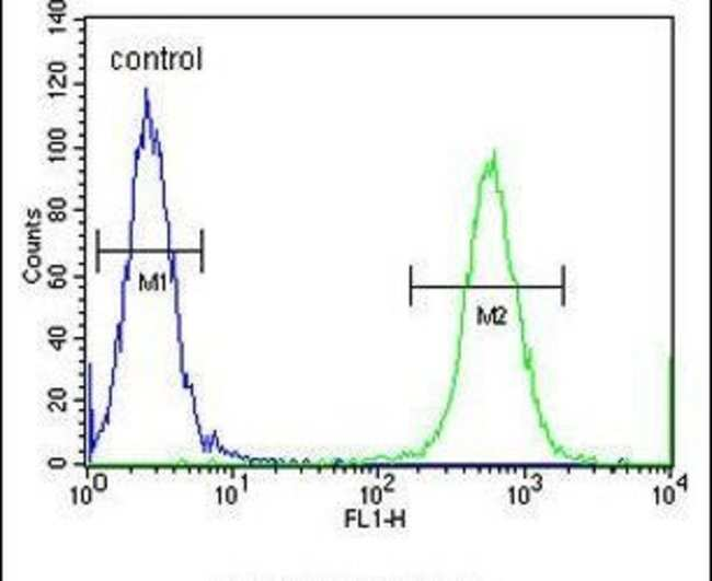 CCDC148 Rabbit anti-Human, Mouse, Polyclonal, Invitrogen 400 µL; Unconjugated