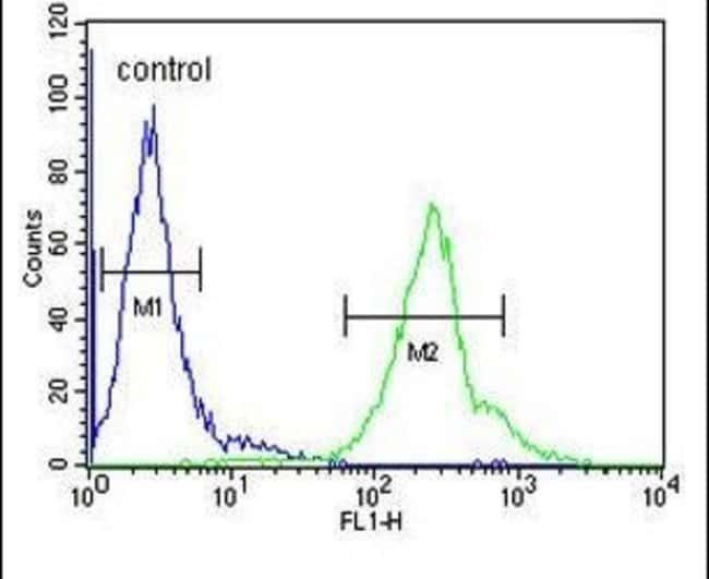 CCDC69 Rabbit anti-Human, Mouse, Polyclonal, Invitrogen 400 µL; Unconjugated