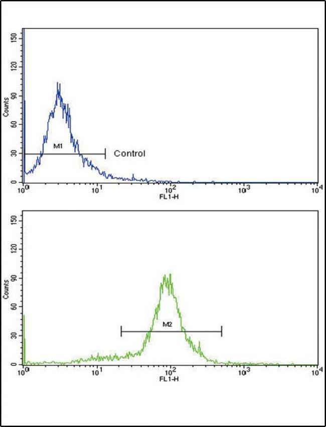 MCP-1 Rabbit anti-Human, Polyclonal, Invitrogen 400 µL; Unconjugated