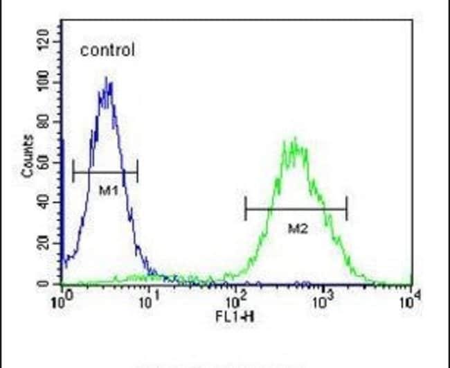 CCR1 Rabbit anti-Human, Polyclonal, Invitrogen 400 µL; Unconjugated