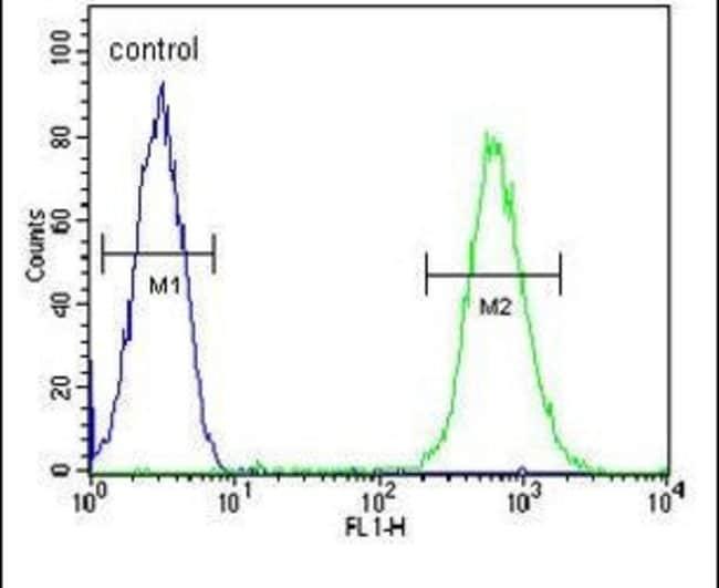 CD37 Rabbit anti-Human, Polyclonal, Invitrogen 400 µL; Unconjugated