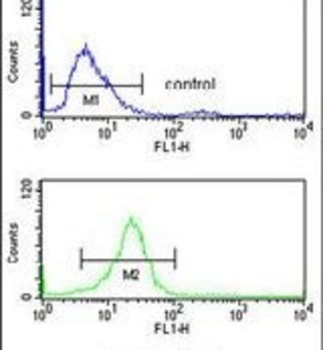 CD49f Rabbit anti-Human, Polyclonal, Invitrogen 400 µL; Unconjugated