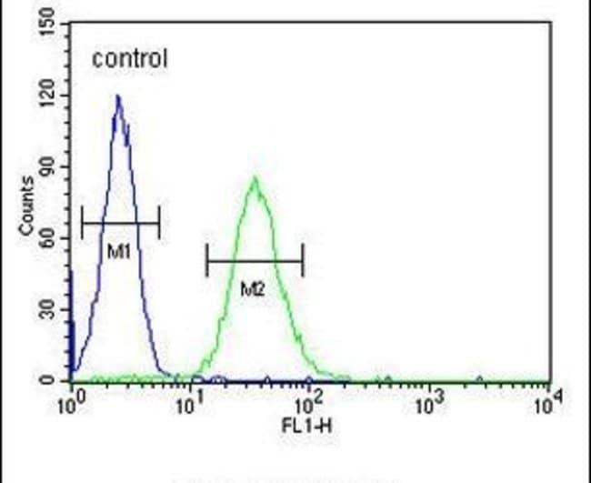 CD80 Rabbit anti-Human, Polyclonal, Invitrogen 400 µL; Unconjugated