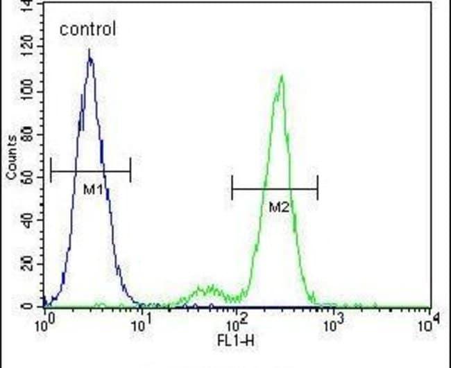 CEP164 Rabbit anti-Human, Polyclonal, Invitrogen 400 µL; Unconjugated