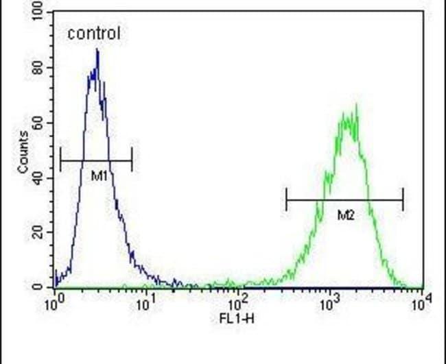 C6orf150 Rabbit anti-Human, Polyclonal, Invitrogen 400 µL; Unconjugated