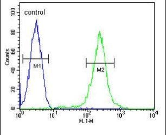 Properdin Rabbit anti-Human, Polyclonal, Invitrogen 400 µL; Unconjugated