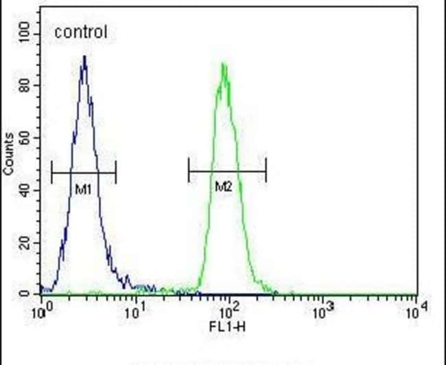 CIRH1A Rabbit anti-Human, Mouse, Polyclonal, Invitrogen 400 µL; Unconjugated