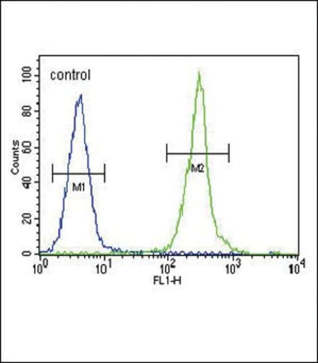 Claudin 16 Rabbit anti-Human, Polyclonal, Invitrogen 400 µL; Unconjugated