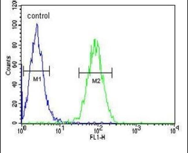 Claudin 22 Rabbit anti-Human, Mouse, Polyclonal, Invitrogen 400 µL;