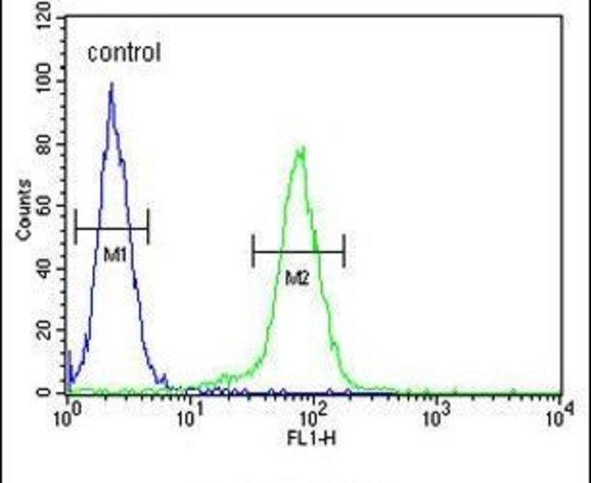 Claudin 8 Rabbit anti-Human, Polyclonal, Invitrogen 400 µL; Unconjugated