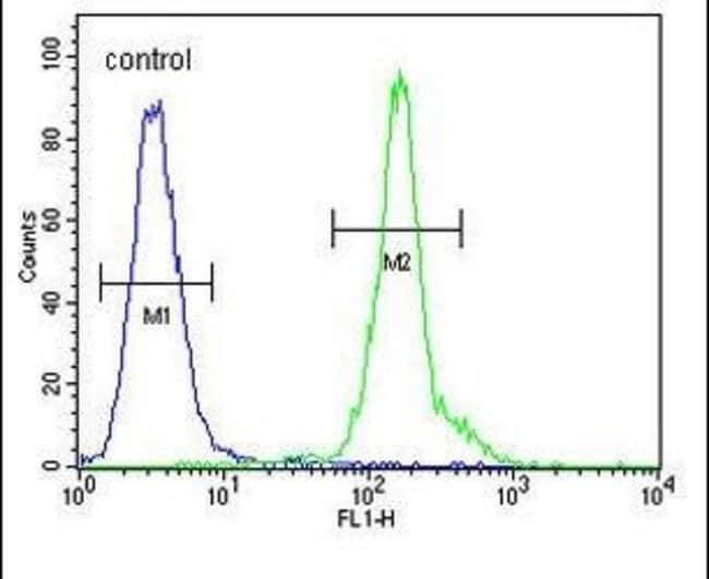 CD301 Rabbit anti-Human, Polyclonal, Invitrogen 400 µL; Unconjugated