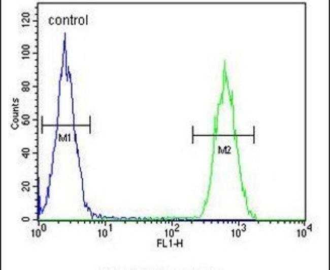 Clathrin Light Chain A Rabbit anti-Human, Polyclonal, Invitrogen 400 µL;