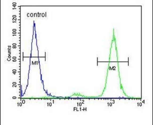 CNPY2 Rabbit anti-Human, Polyclonal, Invitrogen 400 µL; Unconjugated