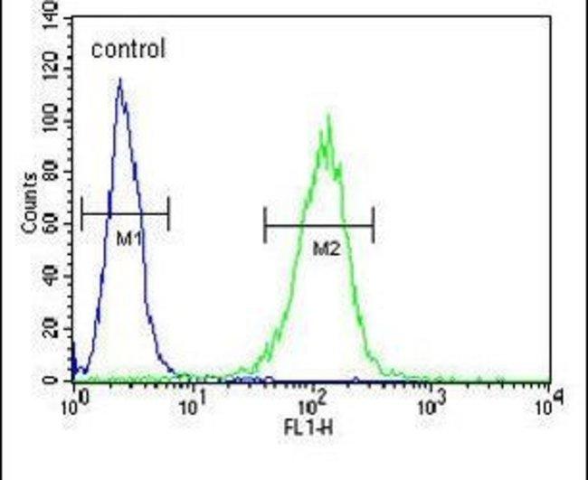 COQ9 Rabbit anti-Human, Mouse, Polyclonal, Invitrogen 400 µL; Unconjugated