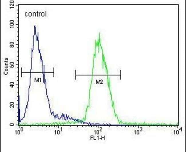 Ceruloplasmin Rabbit anti-Human, Mouse, Polyclonal, Invitrogen 400 µL;