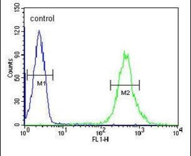 CRIP1 Rabbit anti-Human, Mouse, Polyclonal, Invitrogen 400 µL; Unconjugated