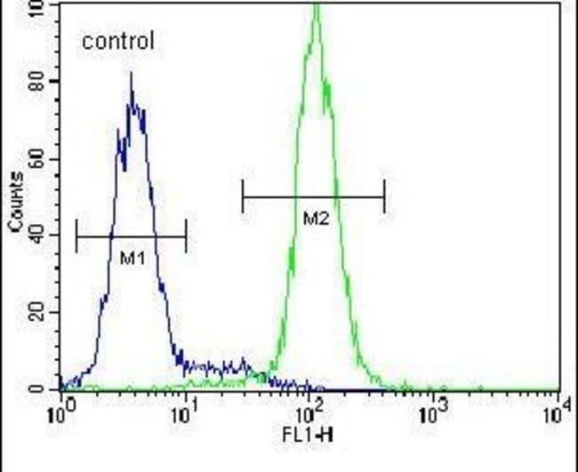 Cystatin 9 Rabbit anti-Human, Polyclonal, Invitrogen 400 µL; Unconjugated