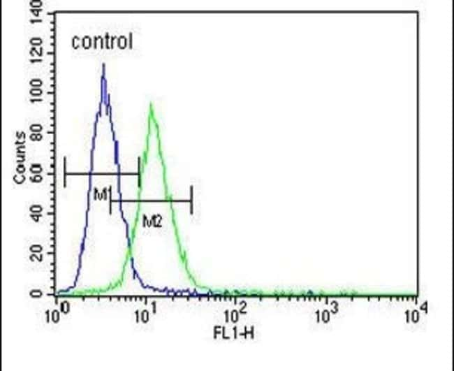 Citrate Synthase Rabbit anti-Human, Polyclonal, Invitrogen 400 µL;