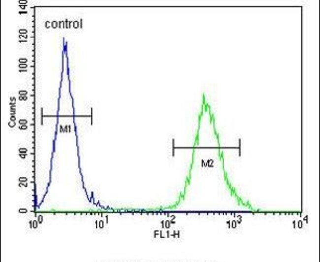 CYB561D1 Rabbit anti-Human, Mouse, Polyclonal, Invitrogen 400 µL;