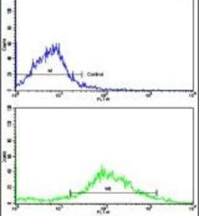 CYP20A1 Rabbit anti-Human, Polyclonal, Invitrogen 400 µL; Unconjugated
