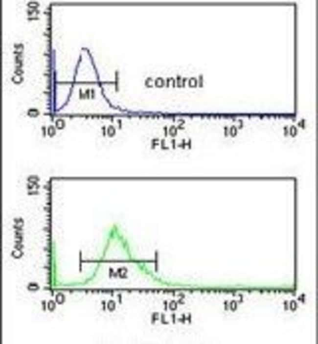 CYP3A43 Rabbit anti-Human, Mouse, Polyclonal, Invitrogen 400 µL; Unconjugated