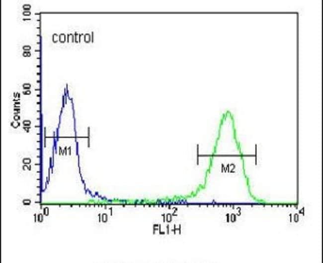 DCP2 Rabbit anti-Human, Polyclonal, Invitrogen 400 µL; Unconjugated