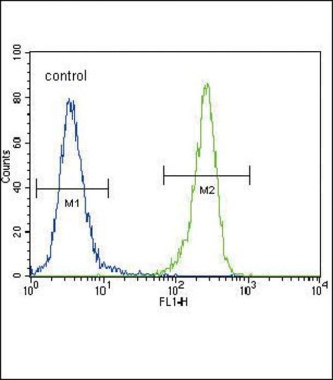 MCK10 Rabbit anti-Human, Polyclonal, Invitrogen 400 µL; Unconjugated
