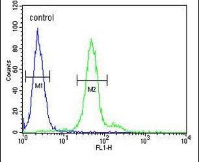 DDX23 Rabbit anti-Human, Polyclonal, Invitrogen 400 µL; Unconjugated