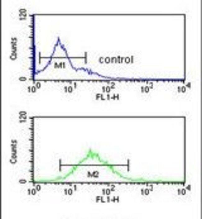 DENND1A Rabbit anti-Human, Polyclonal, Invitrogen 400 µL; Unconjugated