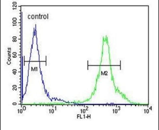 DENND1B Rabbit anti-Human, Polyclonal, Invitrogen 400 µL; Unconjugated