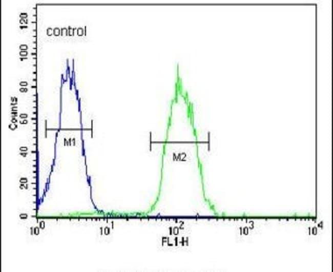 DHRS7 Rabbit anti-Human, Polyclonal, Invitrogen 400 µL; Unconjugated