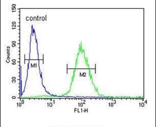 DPP8 Rabbit anti-Human, Polyclonal, Invitrogen 400 µL; Unconjugated
