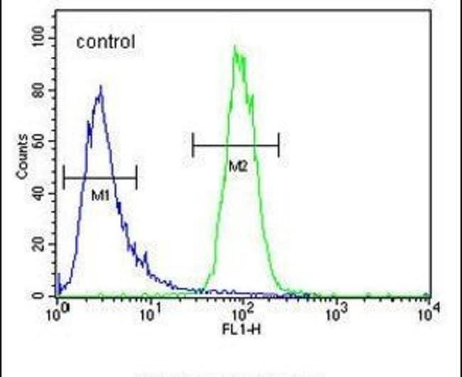 DPY19L1 Rabbit anti-Human, Polyclonal, Invitrogen 400 µL; Unconjugated
